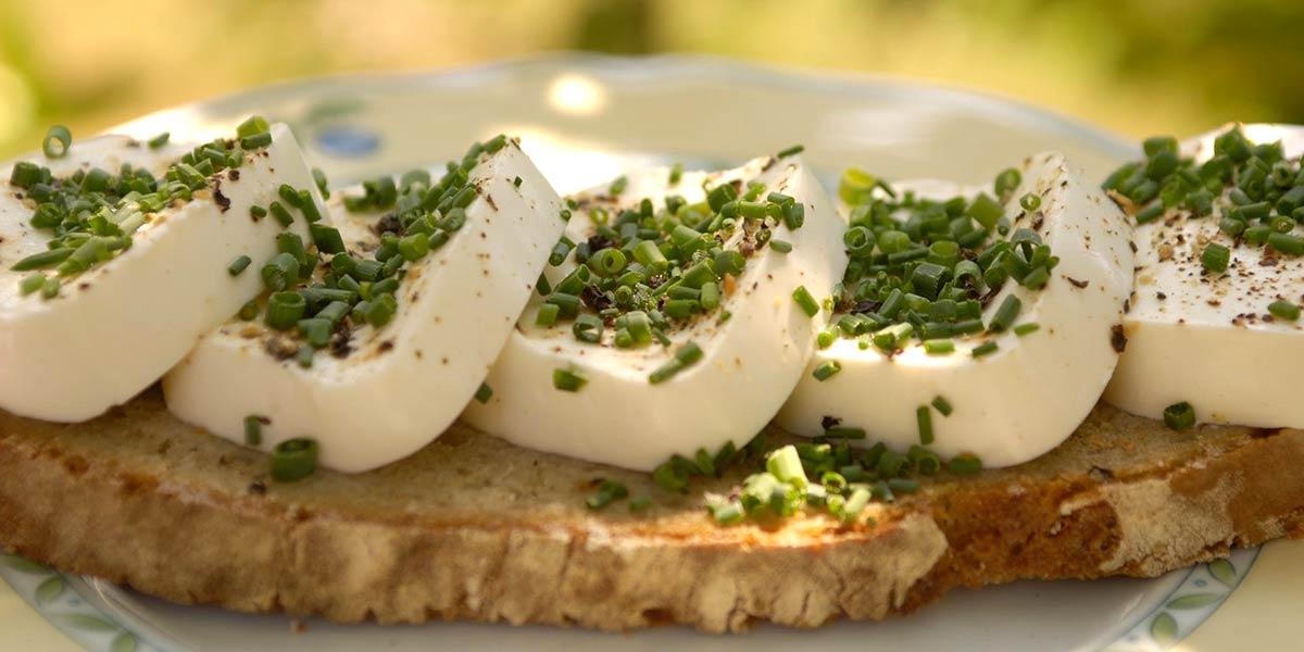Frischer Schafkäse zum Bio Frühstück am Prinzenhof