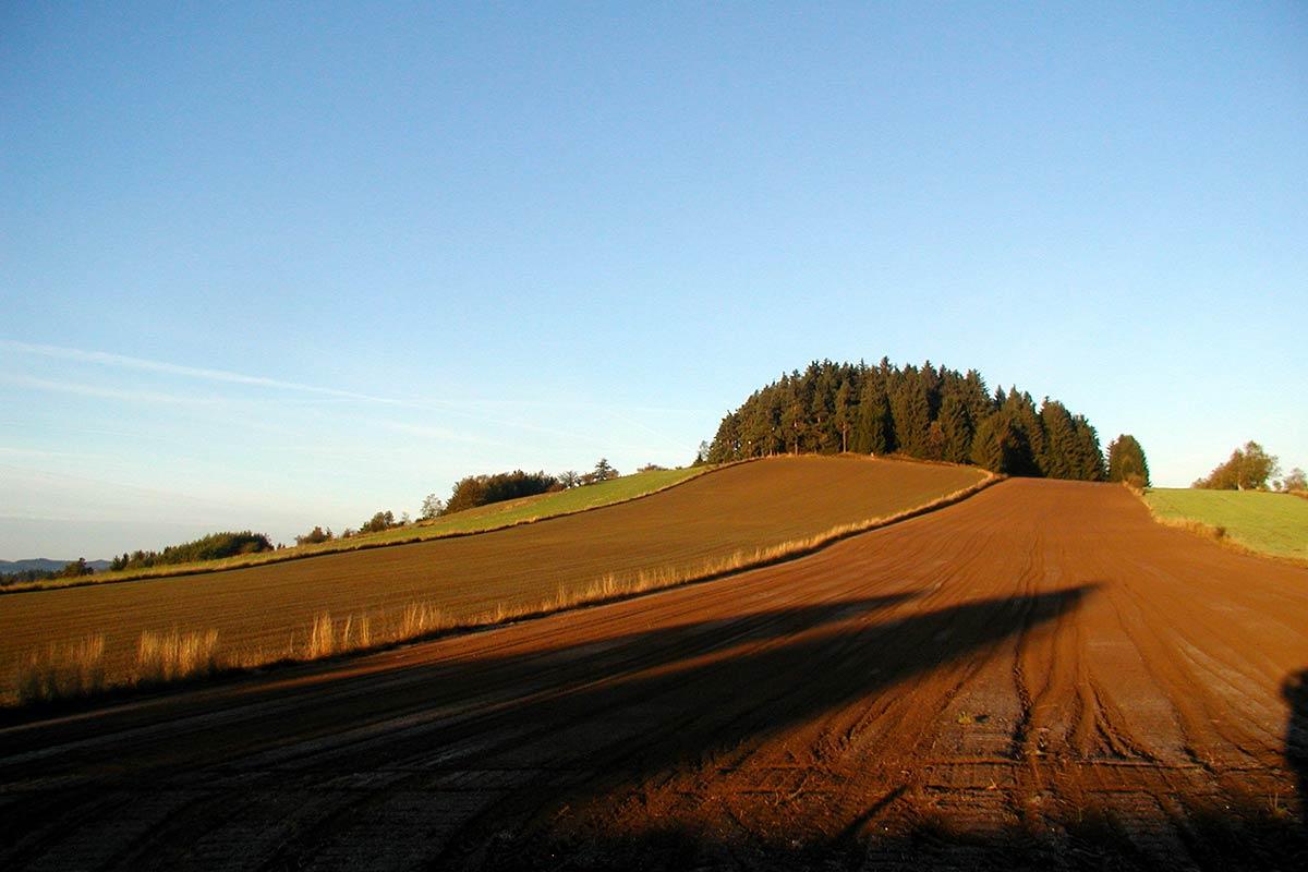 Prinzenhof Umgebung