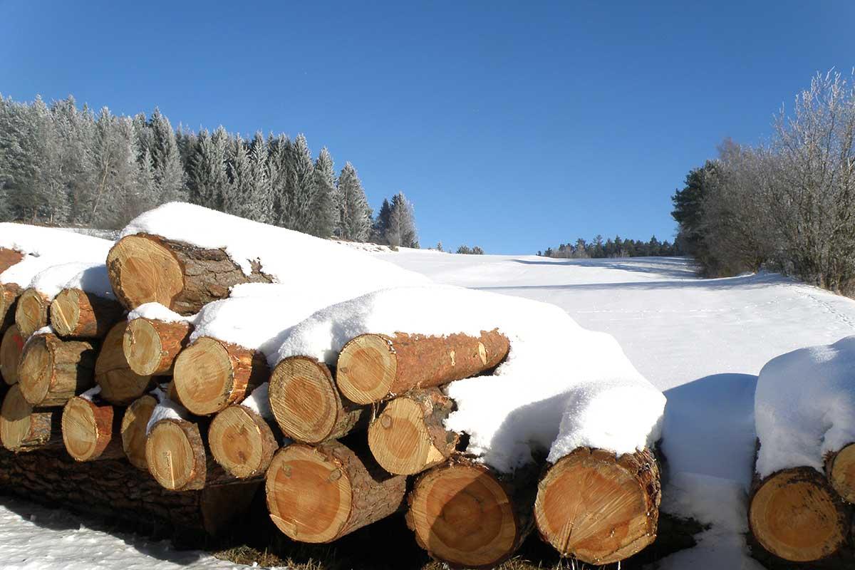 Winterholz, Prinzenhof