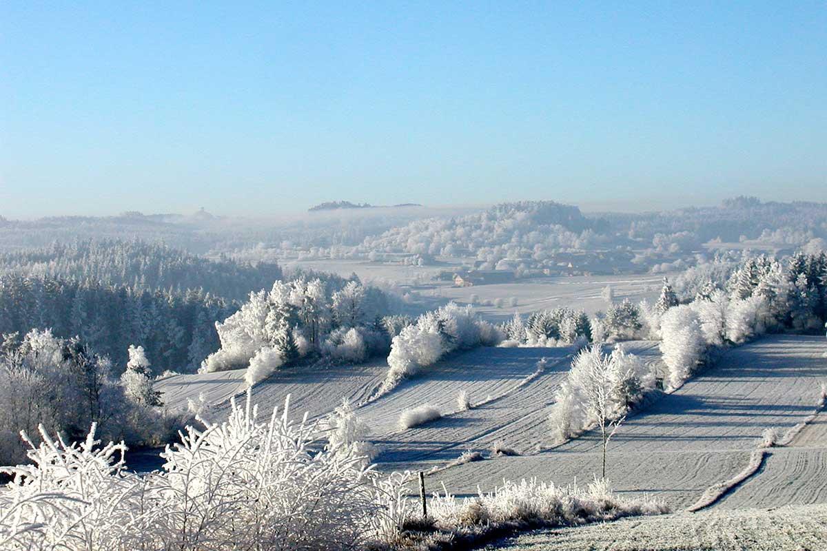 Raureif in Winterlandschaft, Prinzenhof