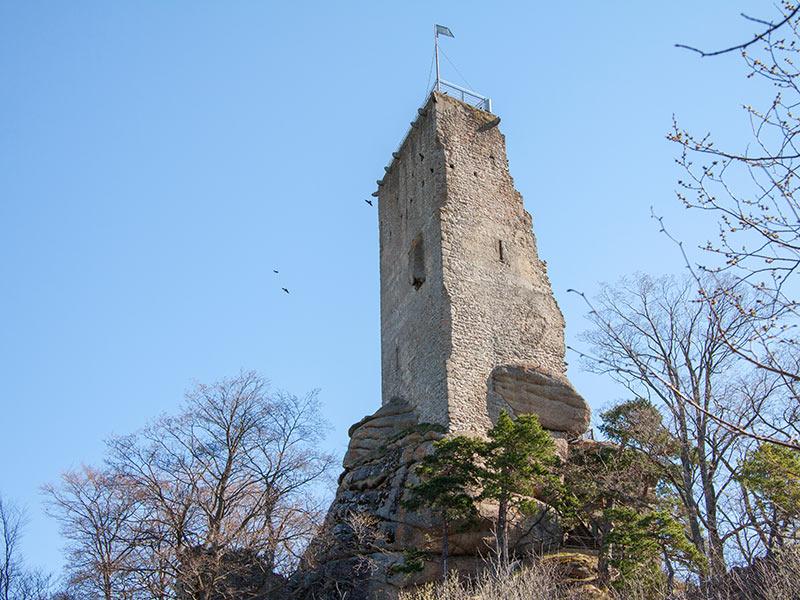 Burgruine Arbesbach (c) MartinLugmayr waldsoft