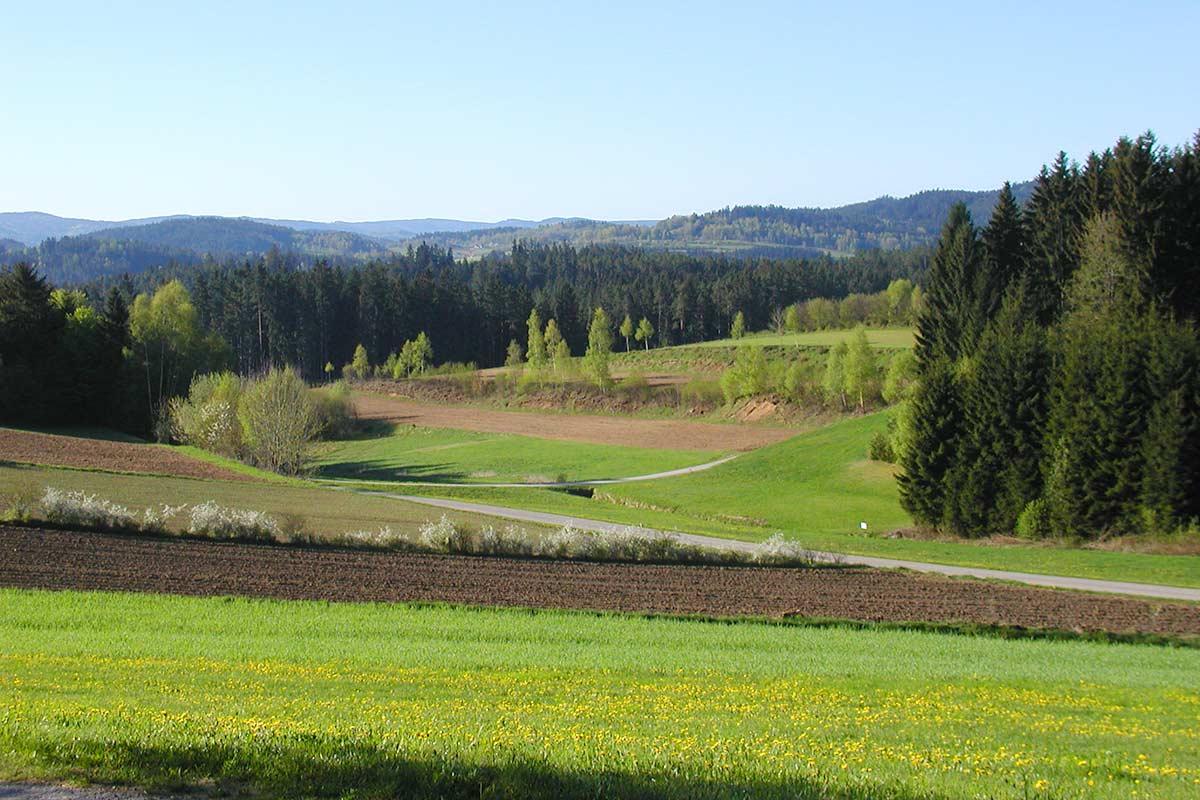 Prinzenhof und viel Gegend, Waldviertler Hochland