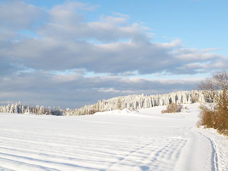 Winterlandschaft bei Groß Gerungs