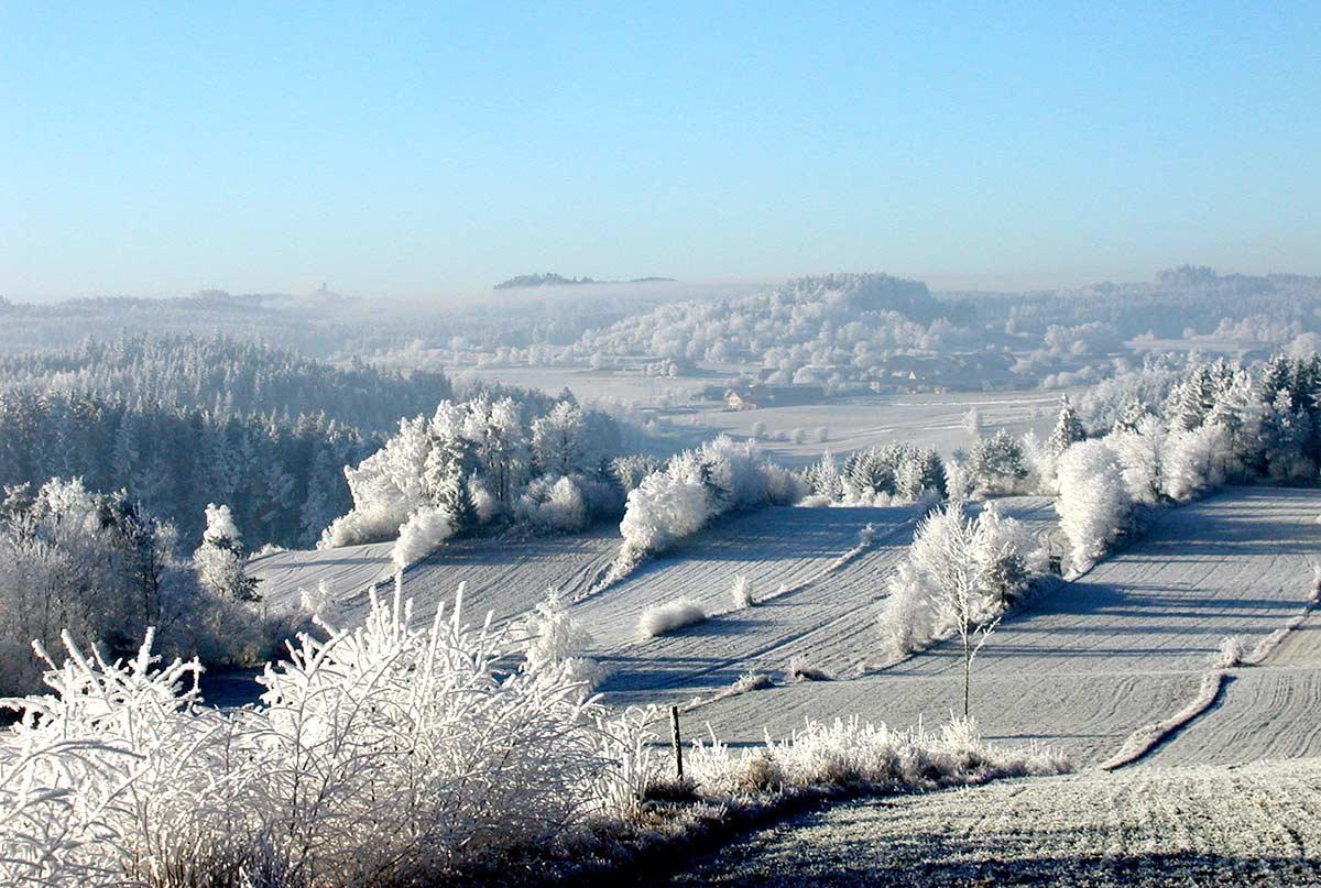 Winterlandschaft nahe Prinzenhof